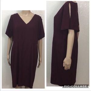 🆕 Ann Taylor Burgundy Split Sleeve Dress